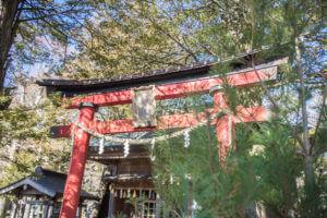 神社の鳥居が赤い